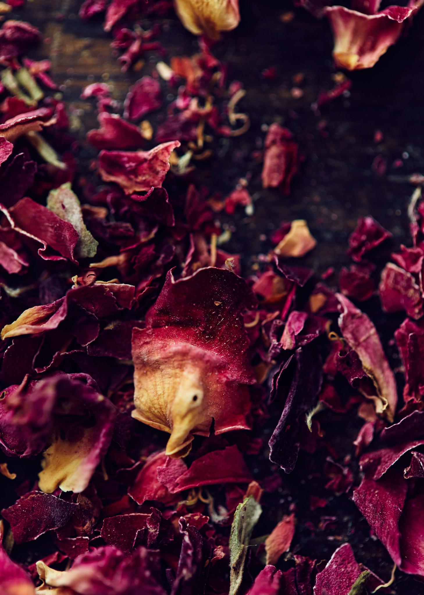 Rose-Petals_2048x2048