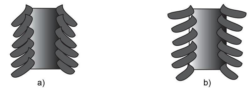 Haarstruktur Cuticula
